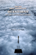 The Ten Most Important Questions ... by Louis Gallo