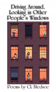 Driving Around, Looking in Other People's Windows by CL Bledsoe