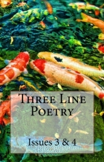 Three Line Poetry Issue #3 & 4