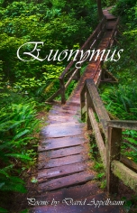 Euonymus by David Appelbaum