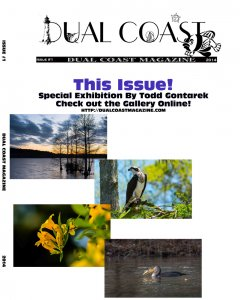 Dual Coast Magazine (Issue #1)