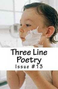 Three Line Poetry Issue #13