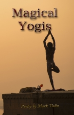 Magical Yogis by Mark Tulin