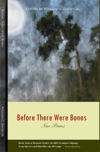 Before There Were Bones by William G. Davies Jr