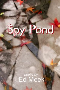 Spy Pond by Ed Meek