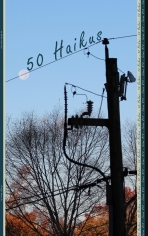 50 Haikus, Volume 1 Issue 10