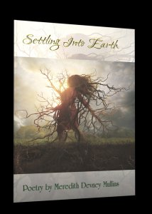 Settling Into Earth by Meredith Devney Mullins