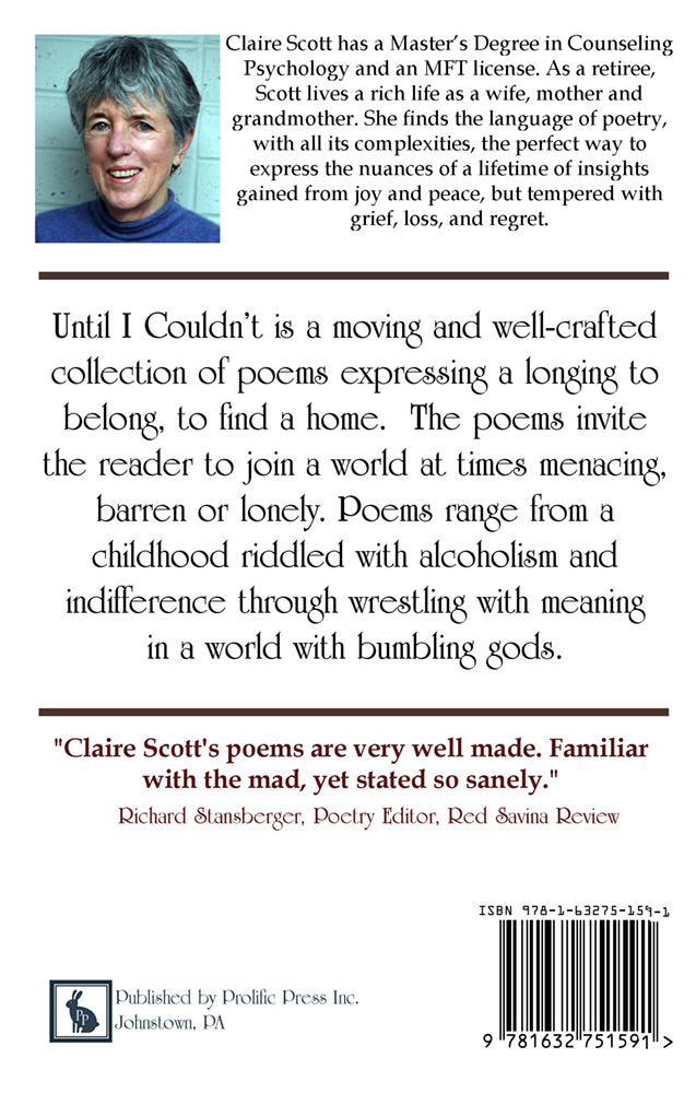 Until I Couldn't by Claire Scott - Click Image to Close